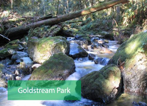 Goldstream Park Victoria BC